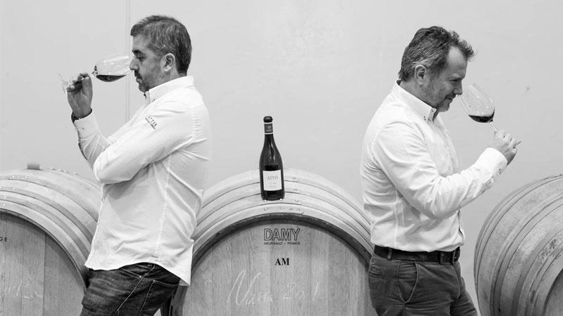 Los hermanos Friña de Attis, bodegas y viñedos